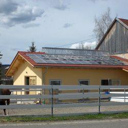 Pferde-Reha-Huttenried-Bild-0007
