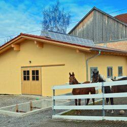 Pferde-Reha-Huttenried-Bild-0008