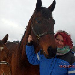 Pferde-Reha-Huttenried-Bild-0024